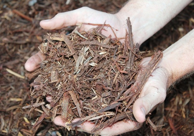 Mulch Canberra Gold Leaf Tree Services